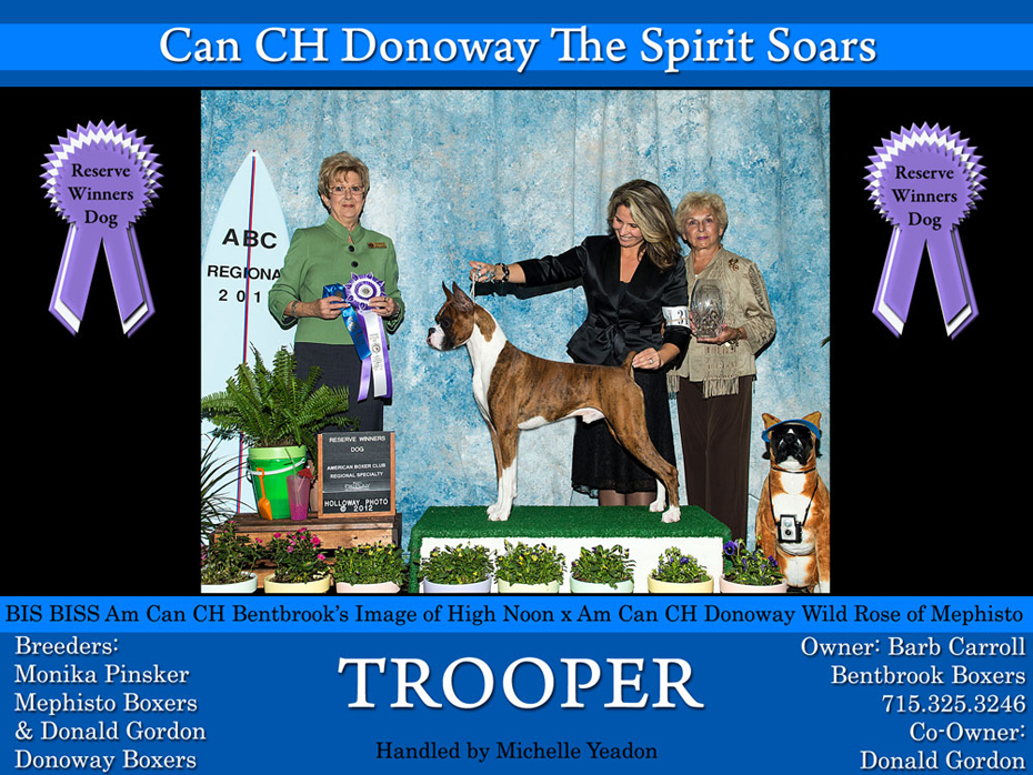 TrooperRWD