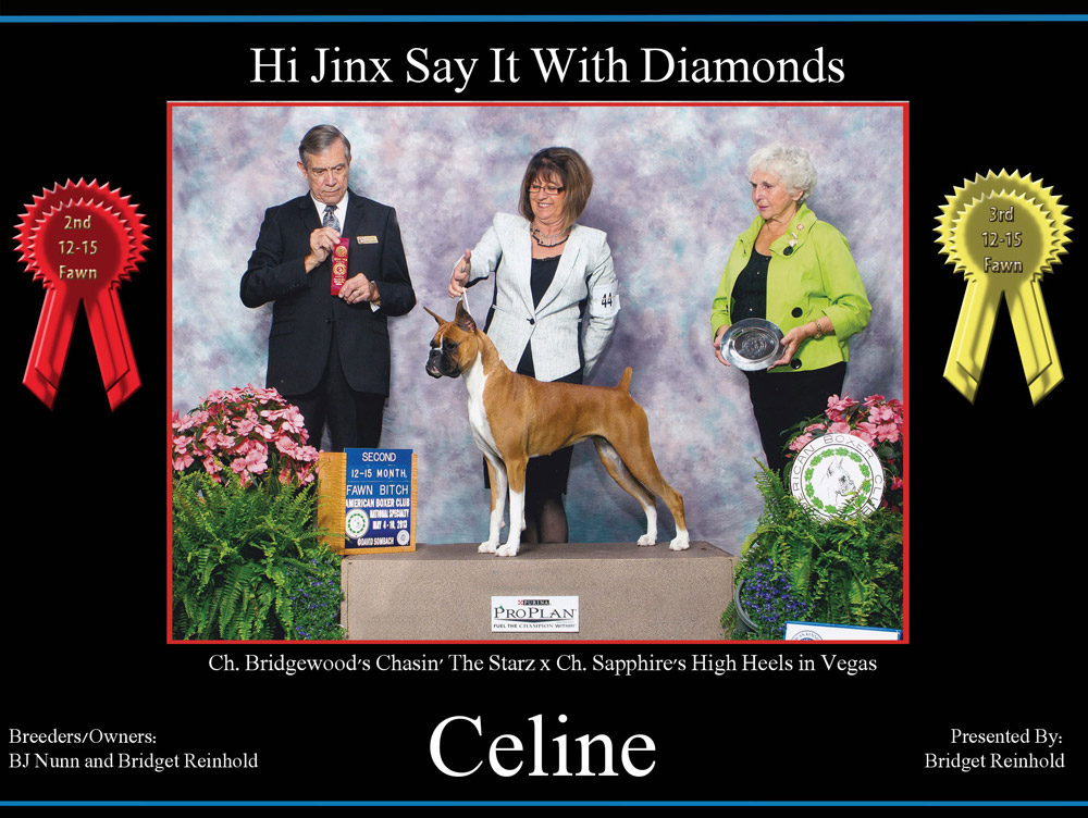 celine-3rd-12-15-fawn--2nd-12-15