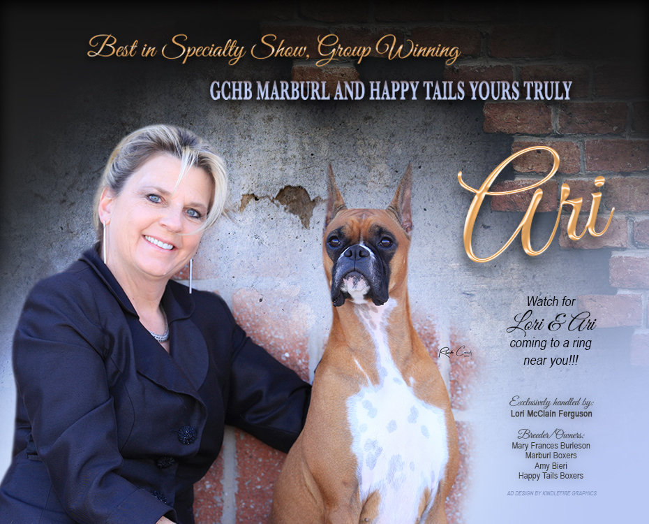"Feature – BISS GCHB Marburl and Happy Tails Yours Truly ""Ari"""