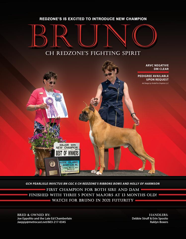 Bruno123021