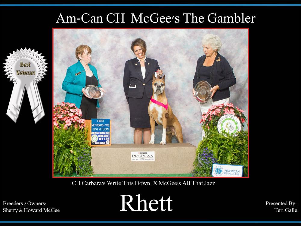 Rhett-Best-Veteran-Dog