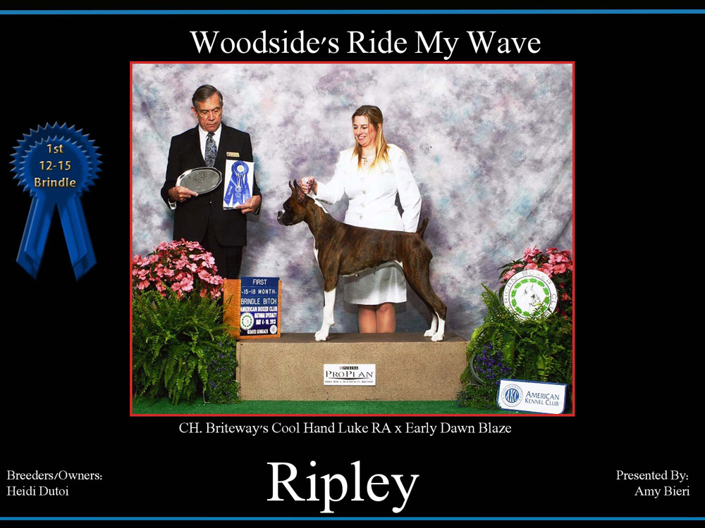 Ripley-1st-12-15-bitch