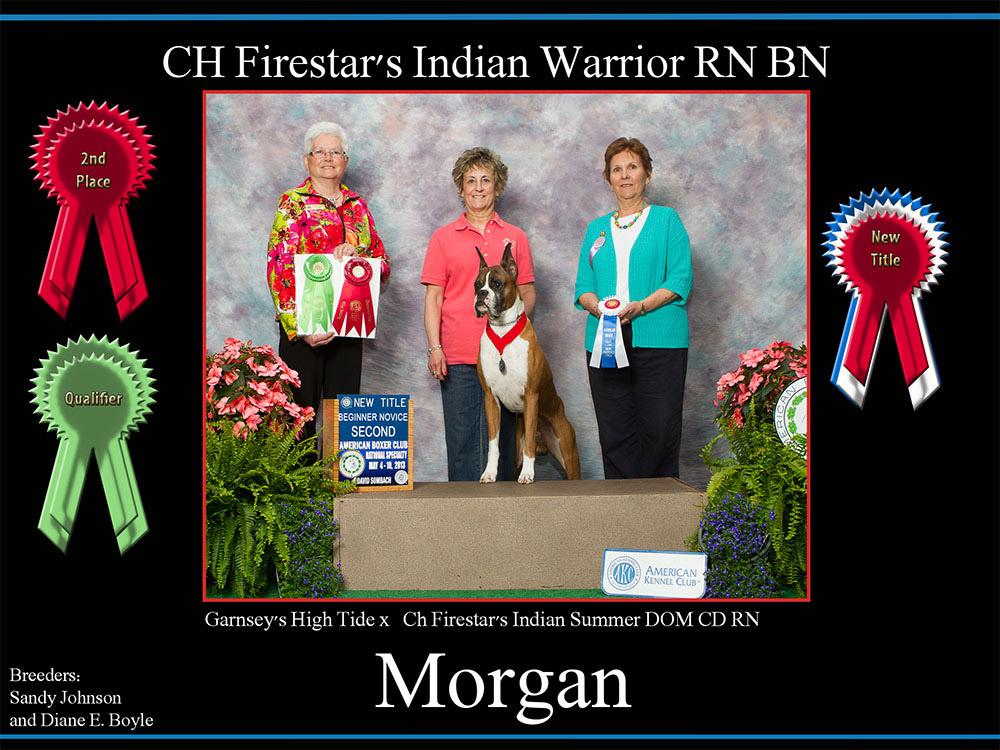 morgan-2nd-place-ribbon,--qualifier-ribbon,-new-title-ribbon